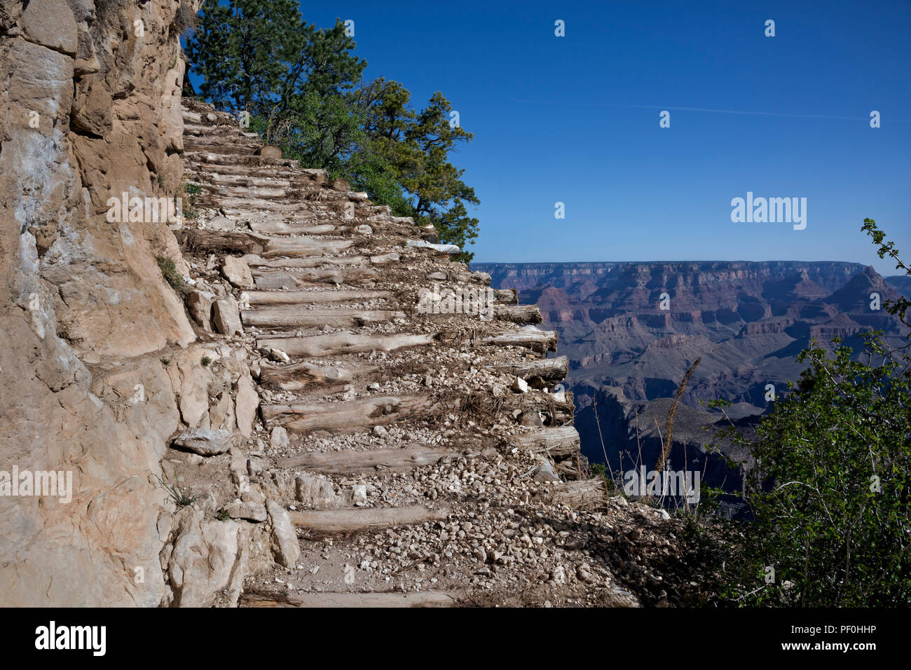 AZ00312-00...ARIZONA - The GrandView Trail along the edge of the steep cliff in Grand Canyon National Park. - Stock Image