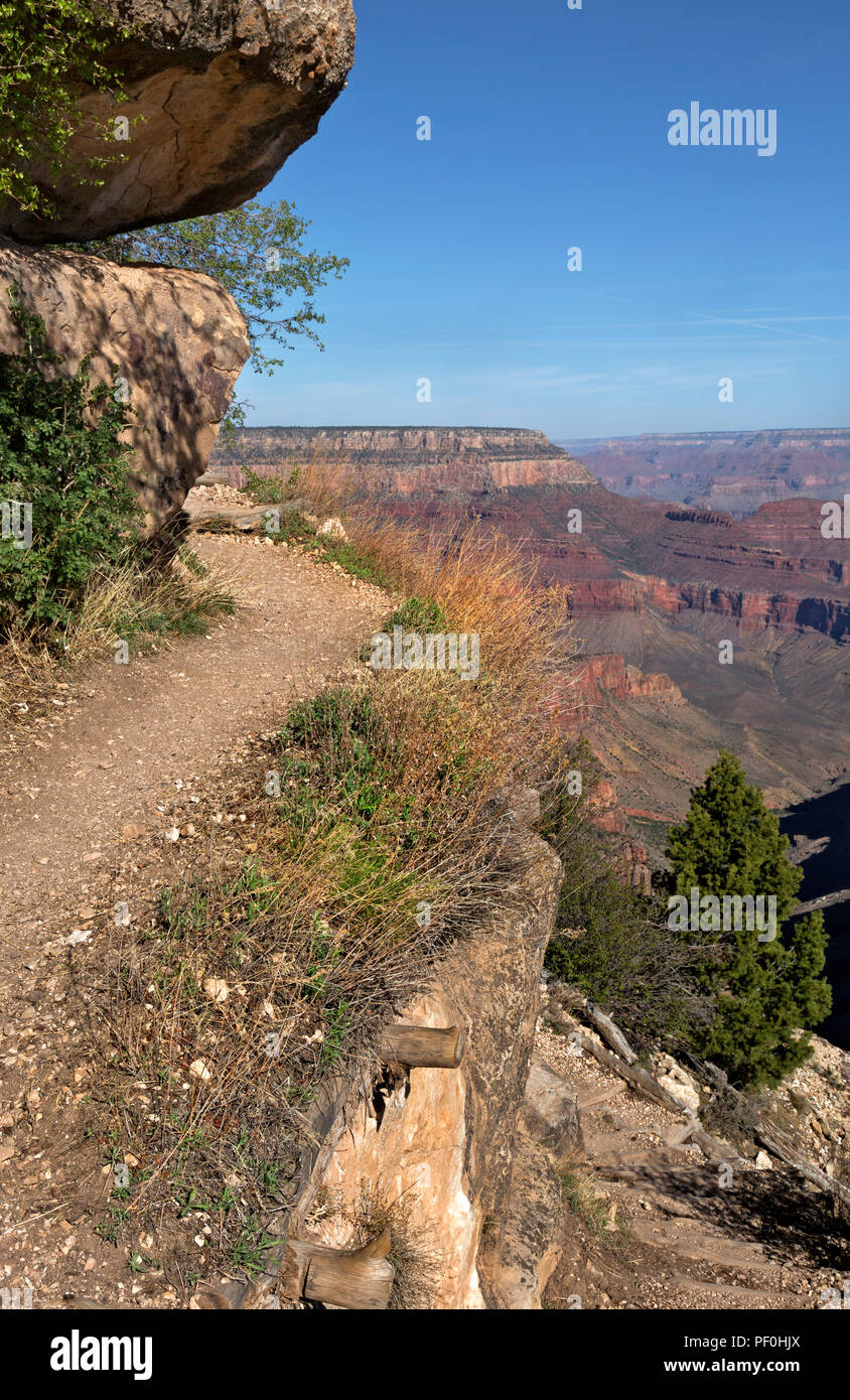 AZ00314-00...ARIZONA - The GrandView Trail along the edge of the steep cliff in Grand Canyon National Park. - Stock Image