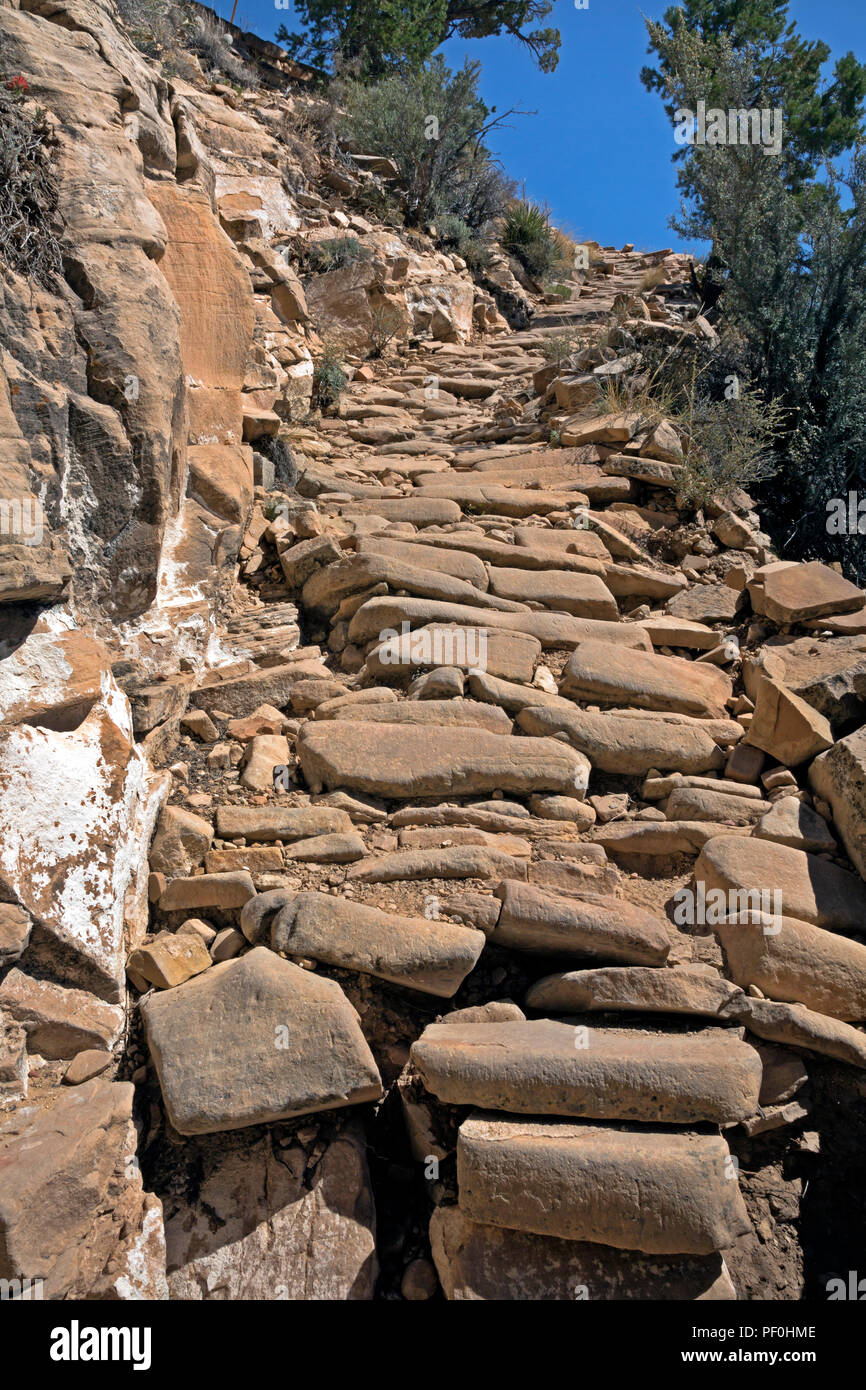 AZ00315-00...ARIZONA - The GrandView Trail in a steep section covered with cobble stones in Grand Canyon National Park. - Stock Image
