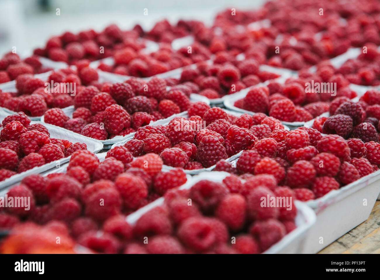 A lot of raspberries in containers on the table in a row. Useful food is rich in vitamins. Harvest. The farm market. - Stock Image