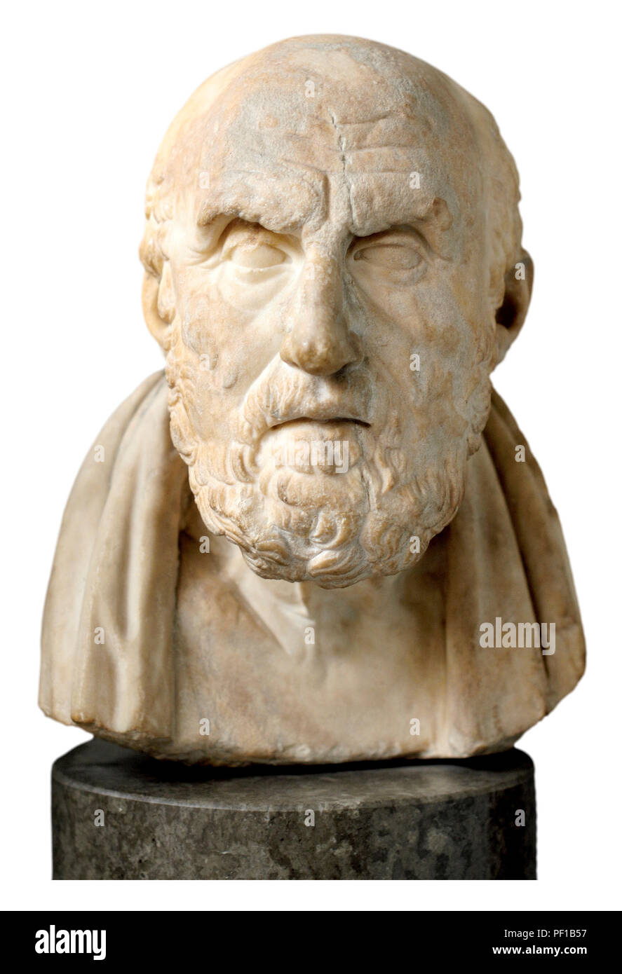 Marble bust of Chrysippos (Greek philosopher: c280-205 BC) member of the Stoic School of philosophy. British Museum, Bloomsbury, London, England, UK.  - Stock Image
