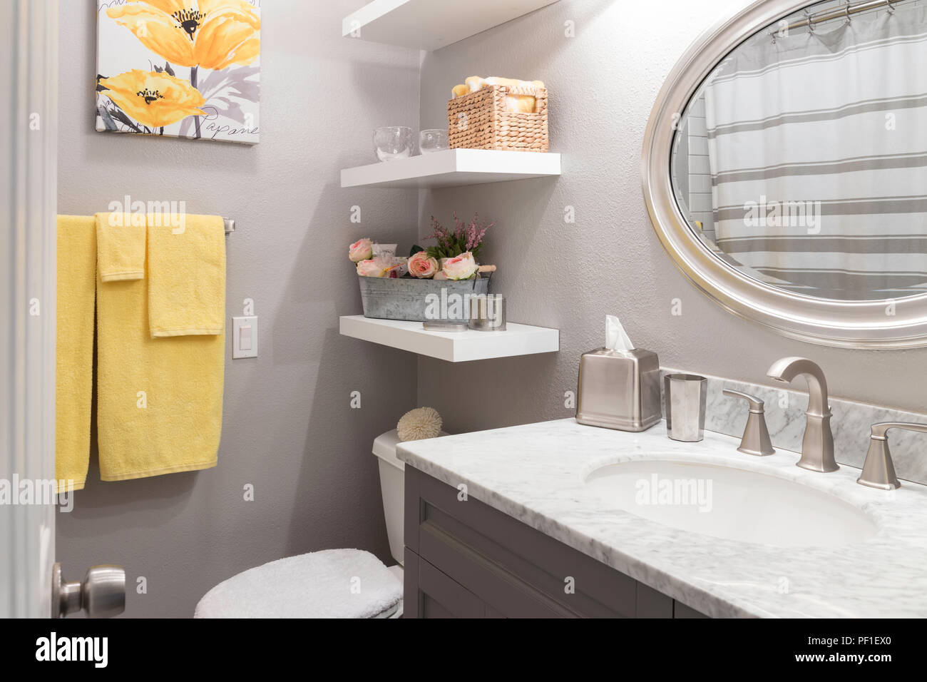 Luxury Residential Bathroom, USA - Stock Image
