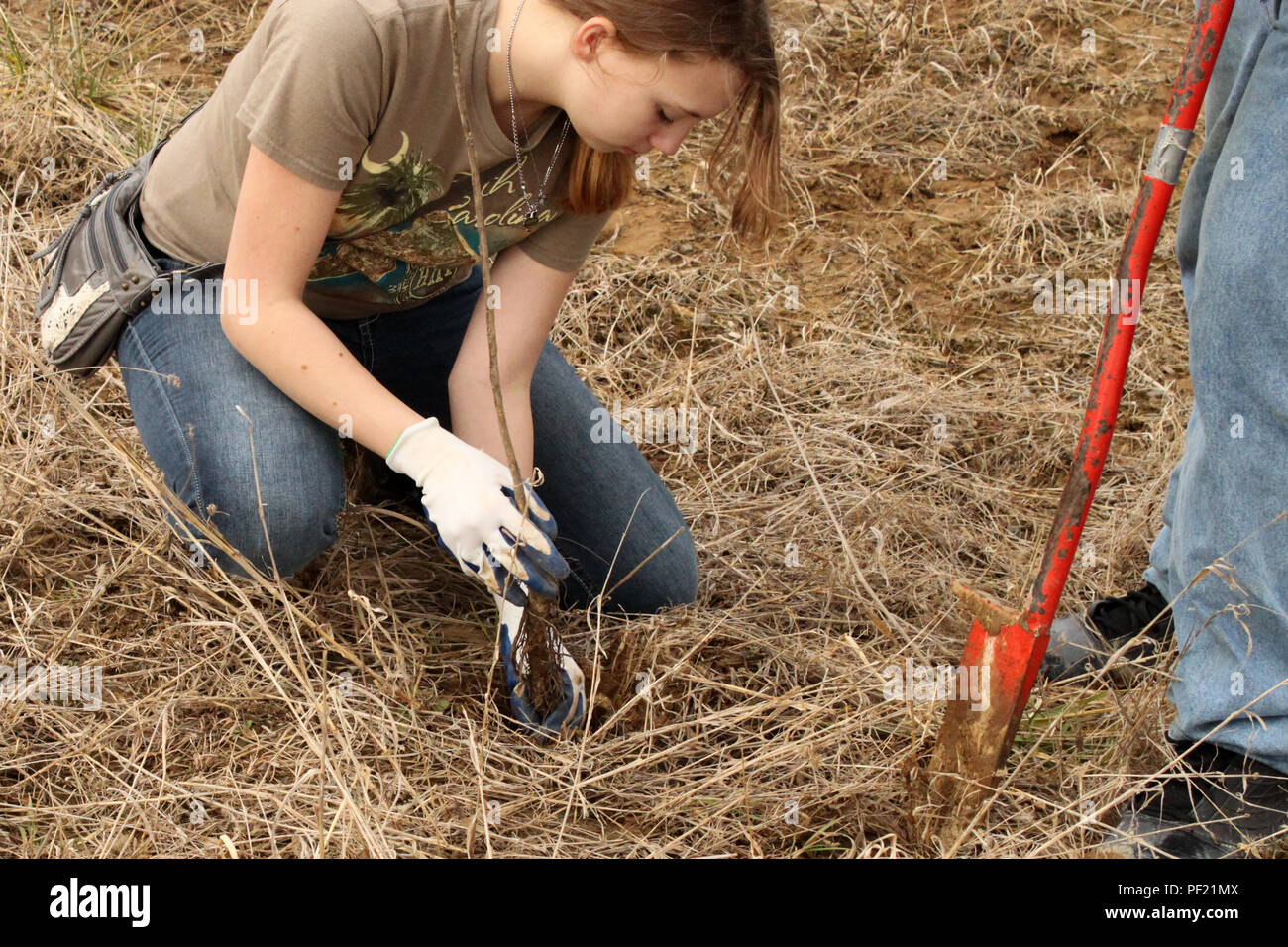 Junior Ranger High Resolution Stock Photography And Images Alamy