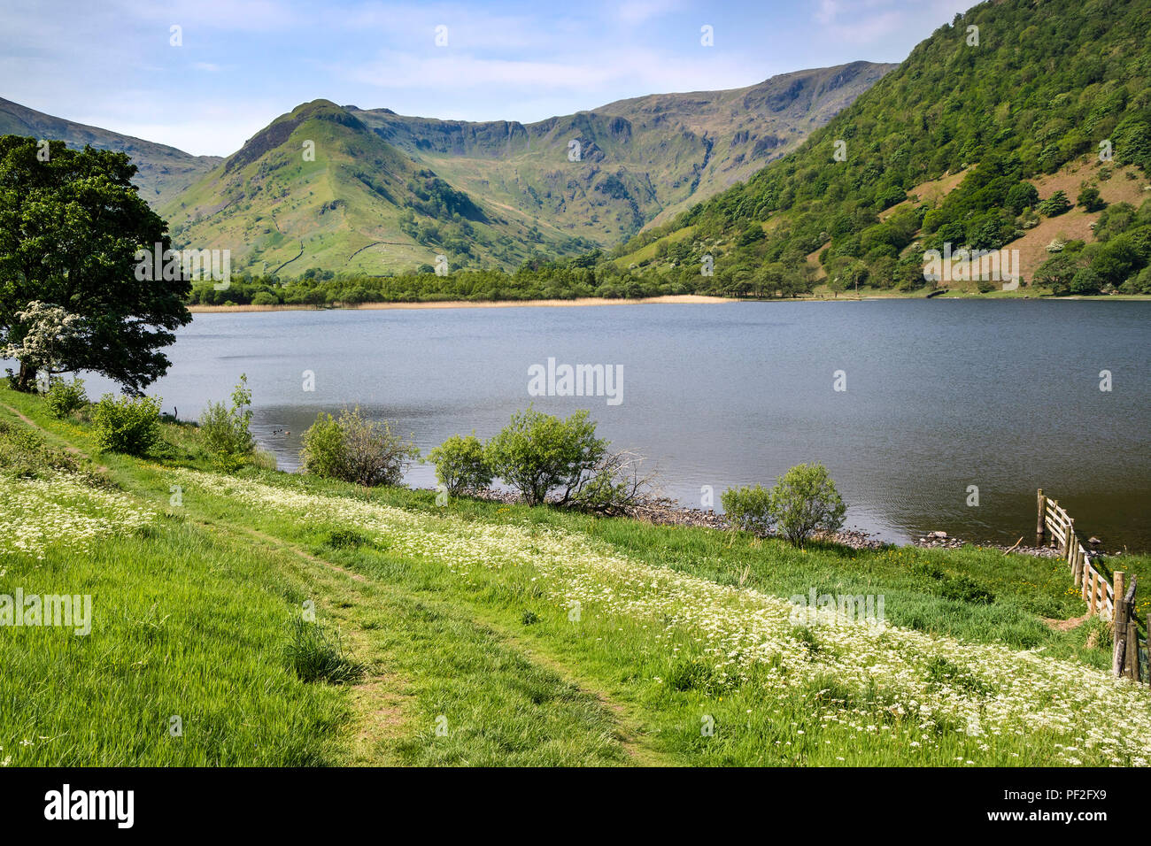 Brothers Water and the View Towards High Hartsop Dodd and the Ridge to Dove Crag, Lake District, Cumbria, UK - Stock Image