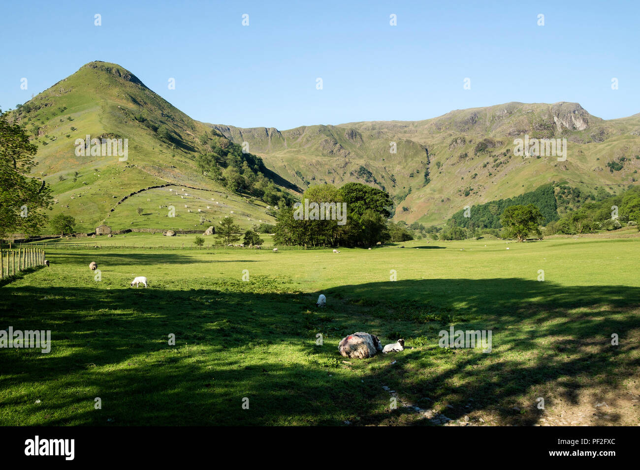High Hartsop Dodd (left) and the Ridge to Dove Crag (right), Viewed From Sykeside, Lake District, Cumbria, UK - Stock Image