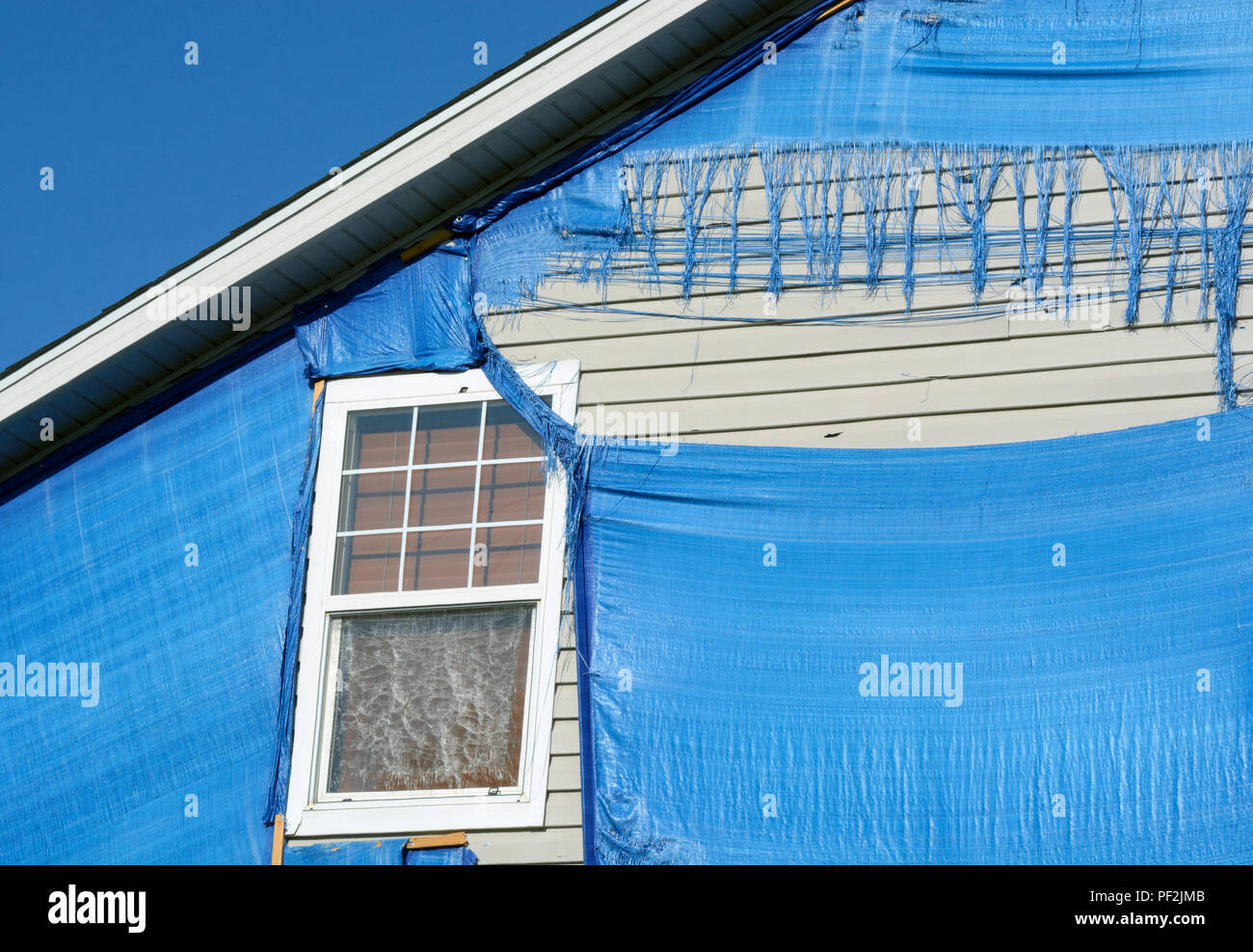 Detail of hail storm damaged home protected by blue tarp weathered and shredded by subsequent storms, sun and wind - Stock Image