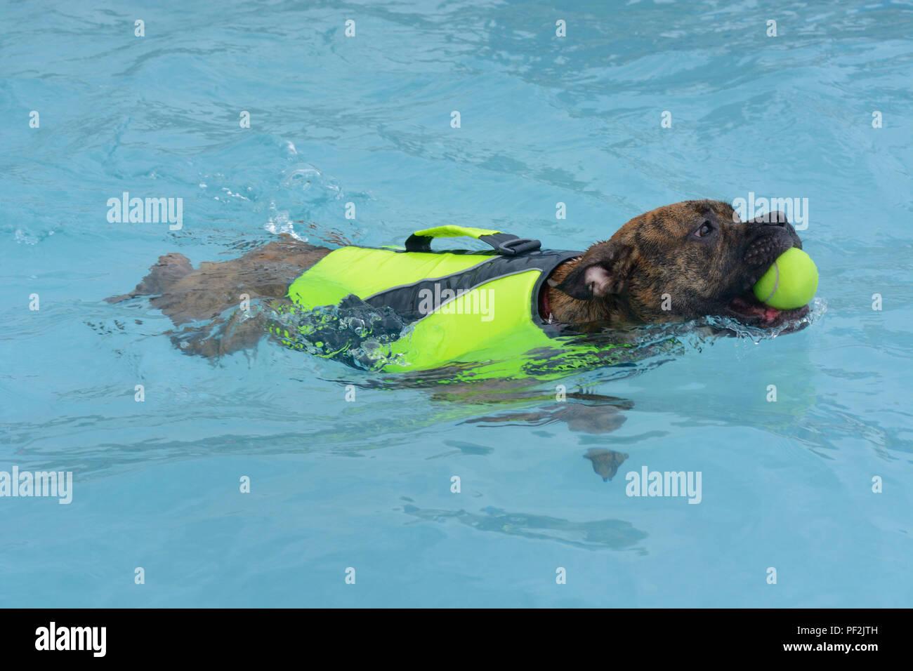 Flotation Stock Photos & Flotation Stock Images - Alamy