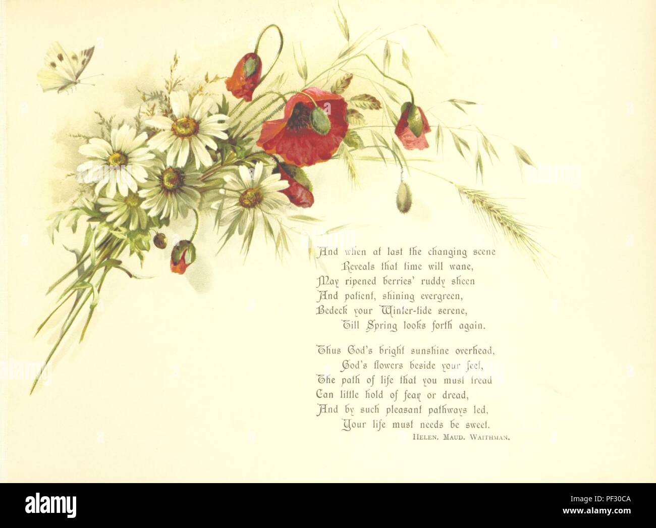 Image  from page 9 of 'A Pathway of Flowers, an album for autographs, and ... verses ... With an introduction [in verse] by Helen M. Waithman' . - Stock Image
