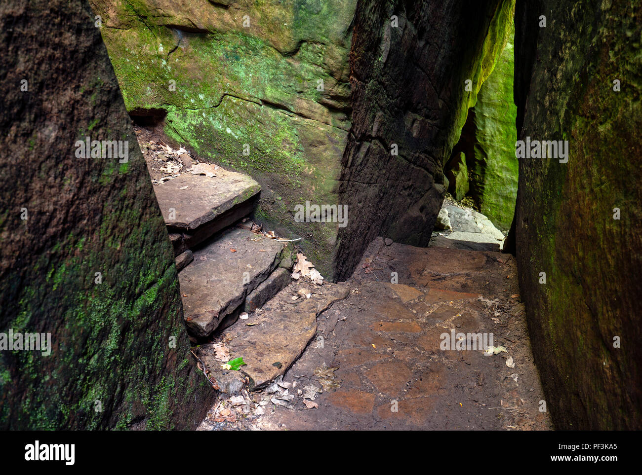 Rim Rock National Recreation Trail, Shawnee National Forest, Illinois, USA Stock Photo