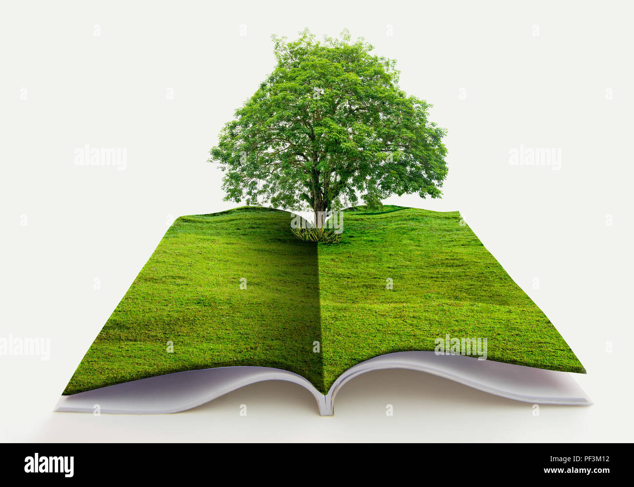 book of nature isolated on whi...