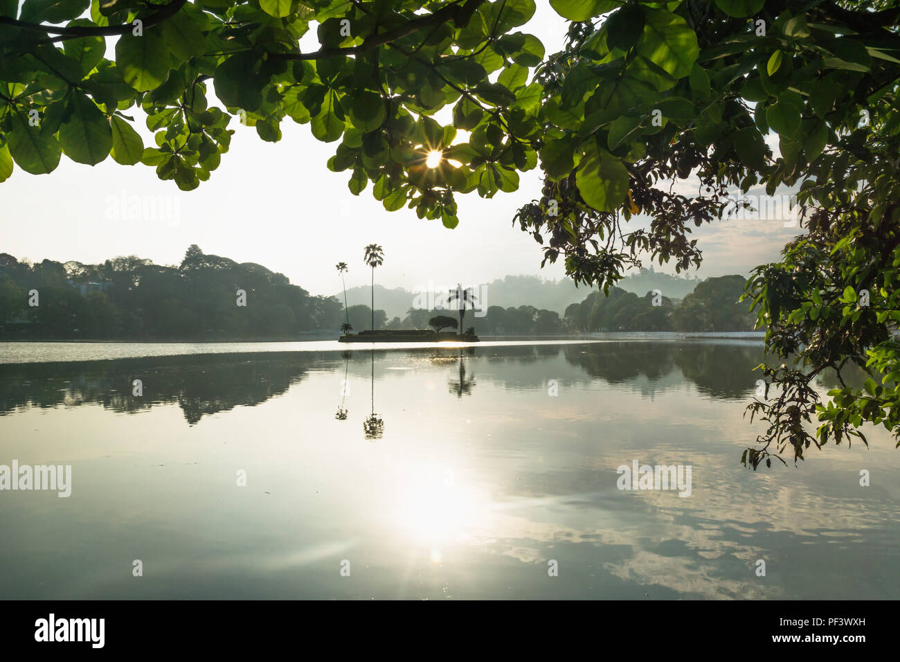 Last sun coming through leaves at Kandy Lake with view to the island, Kandy, Sri Lanka - Stock Image