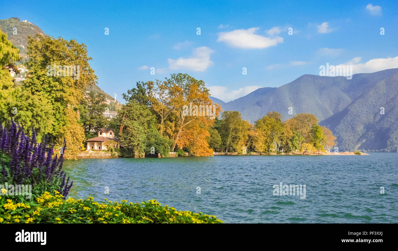 Nice, colourfull flowers at the boulevard of Lake Lugano (Ticino, Switzerland) on a sunny, late september day. Stock Photo