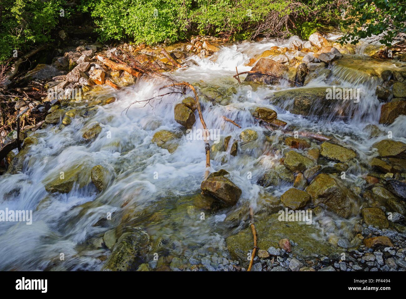 rushing water at a stream crossing on the Taboose Pass trail - Stock Image