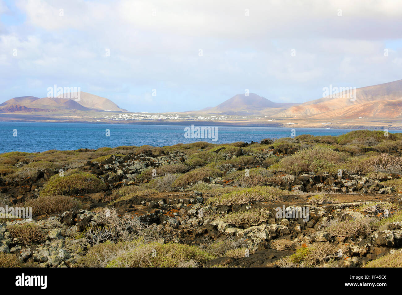 Enchanted landscape on Lanzarote Island with stones, vegetation and mountains on the background, Canary Islands - Stock Image