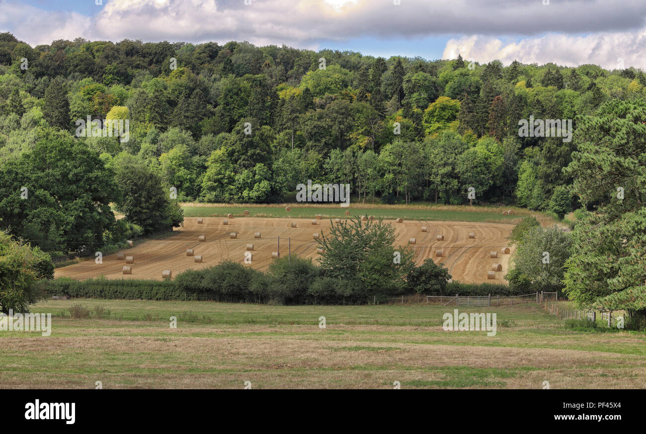 An English Rural Landscape in the Chiltern Hills with Hay Bales and woodland - Stock Image