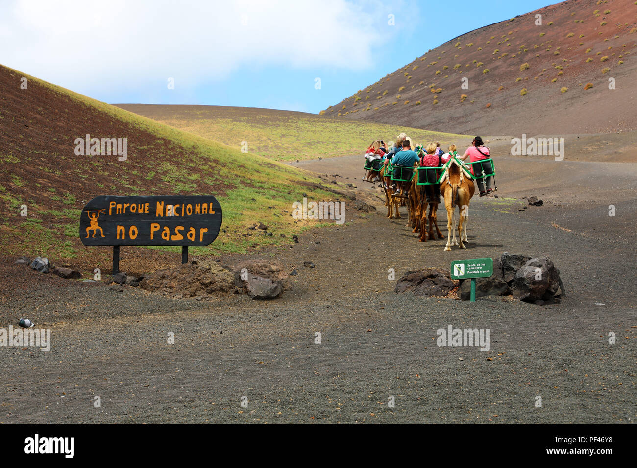 Caravan of camels with tourists in Timanfaya National Park, Lanzarote, Canary Islands - Stock Image