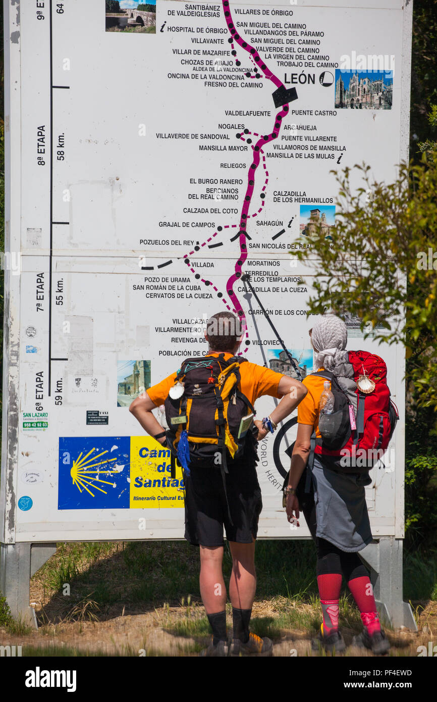 Man and woman pilgrims walking the long distance footpath the Camino de Santiago the way of St James stopped to look at a map of the route - Stock Image
