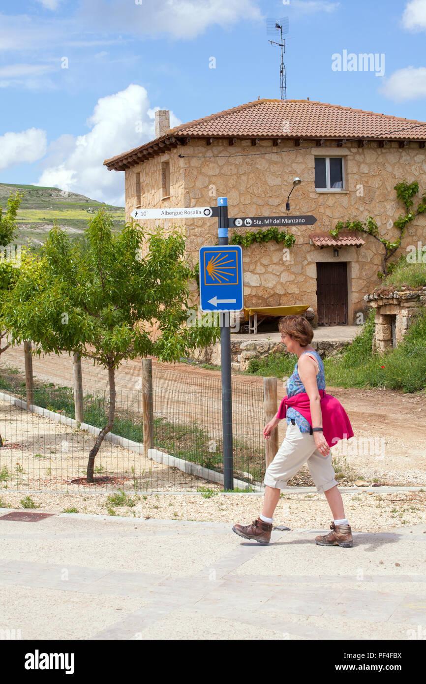 Woman pilgrim walking alone entering the town of Castrojeriz while walking the way of St James the Camino de Santiago Burgos Castille y Leon Spain - Stock Image