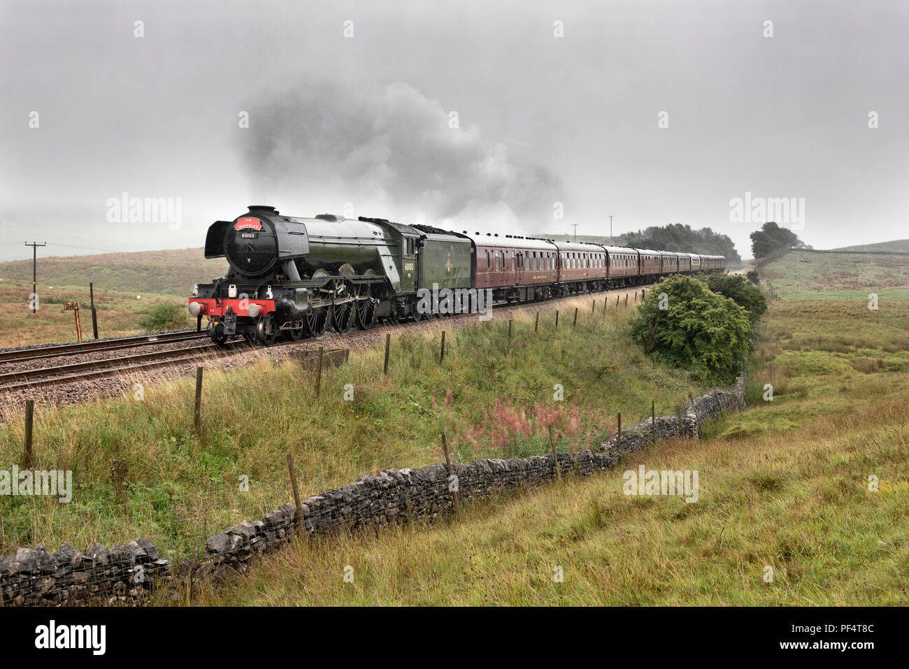 Yorkshire, UK. 19 August 2018. On a wet and overcast day, the famous Flying Scotsman steam locomotive hauls 'The Waverley' special on a York-Carlisle return trip. This is the first steam special to run over the Settle-Carlisle railway line without 'diesel assistance' for some weeks. Until this week the dry conditions required a diesel to be attached behind the steam loco on specials to reduce the likelihood of fires being started by hot discharges from the steam engine. Seen here near Horton-in-Ribblesdale in the Yorkshire Dales National Park. Credit: John Bentley/Alamy Live News - Stock Image