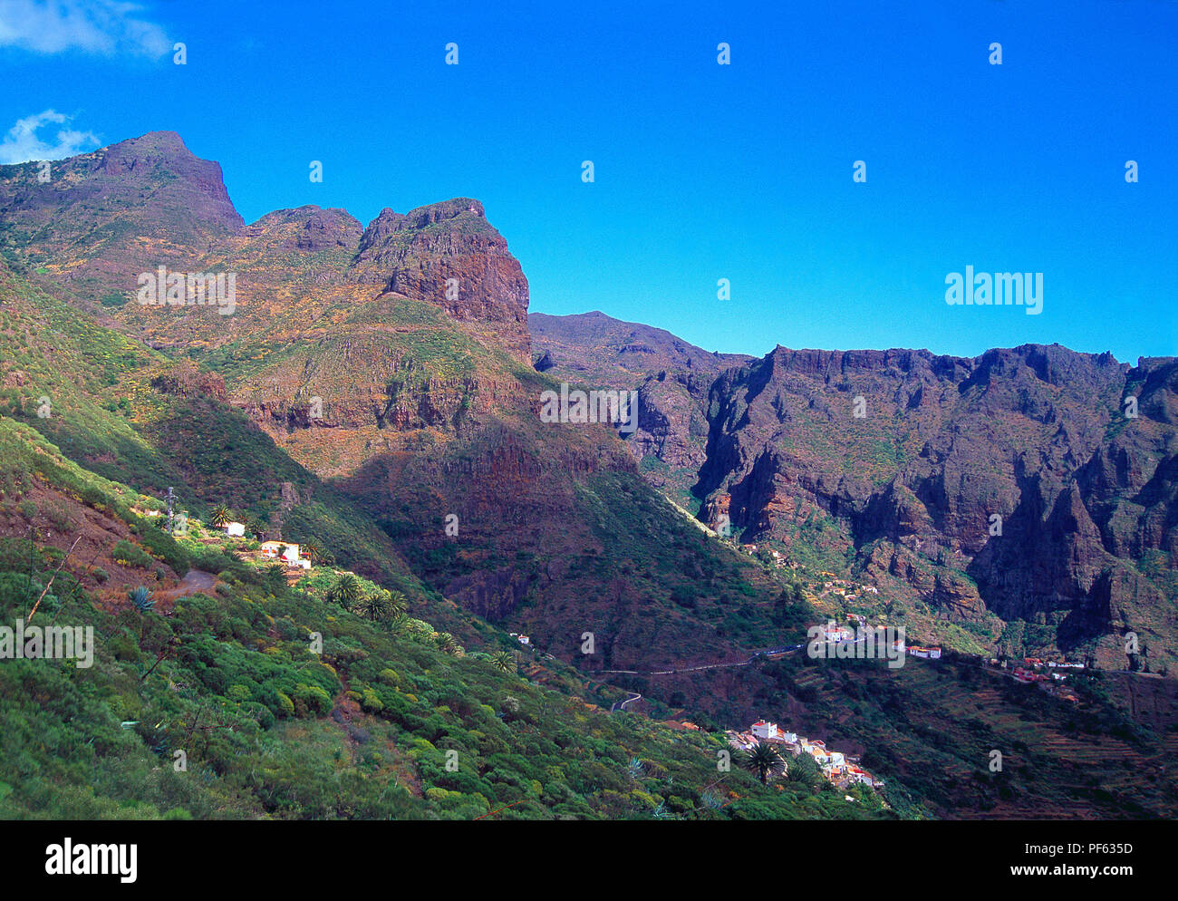 Landscape. Teno Rural Park, Tenerife island, Canary Islands, Spain. Stock Photo