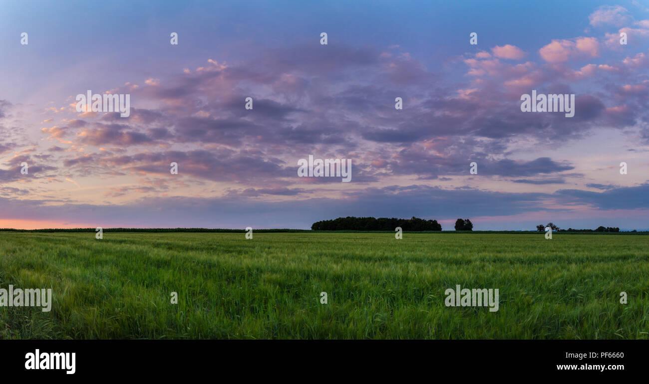 Germany, XXL Dawning fields landscape panorama - Stock Image