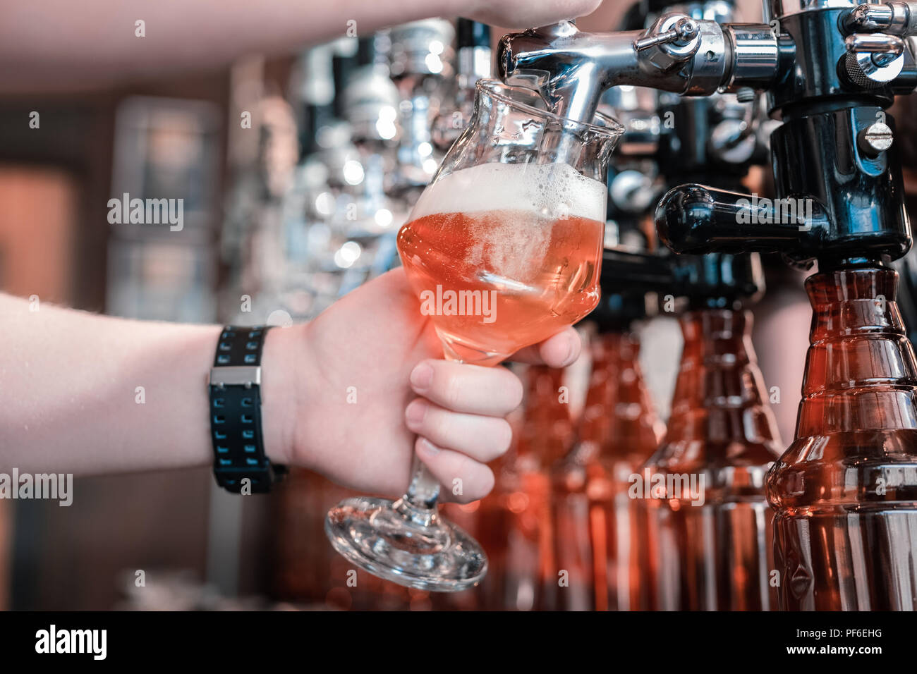 Barman holding glass while filling it with craft dark beer - Stock Image