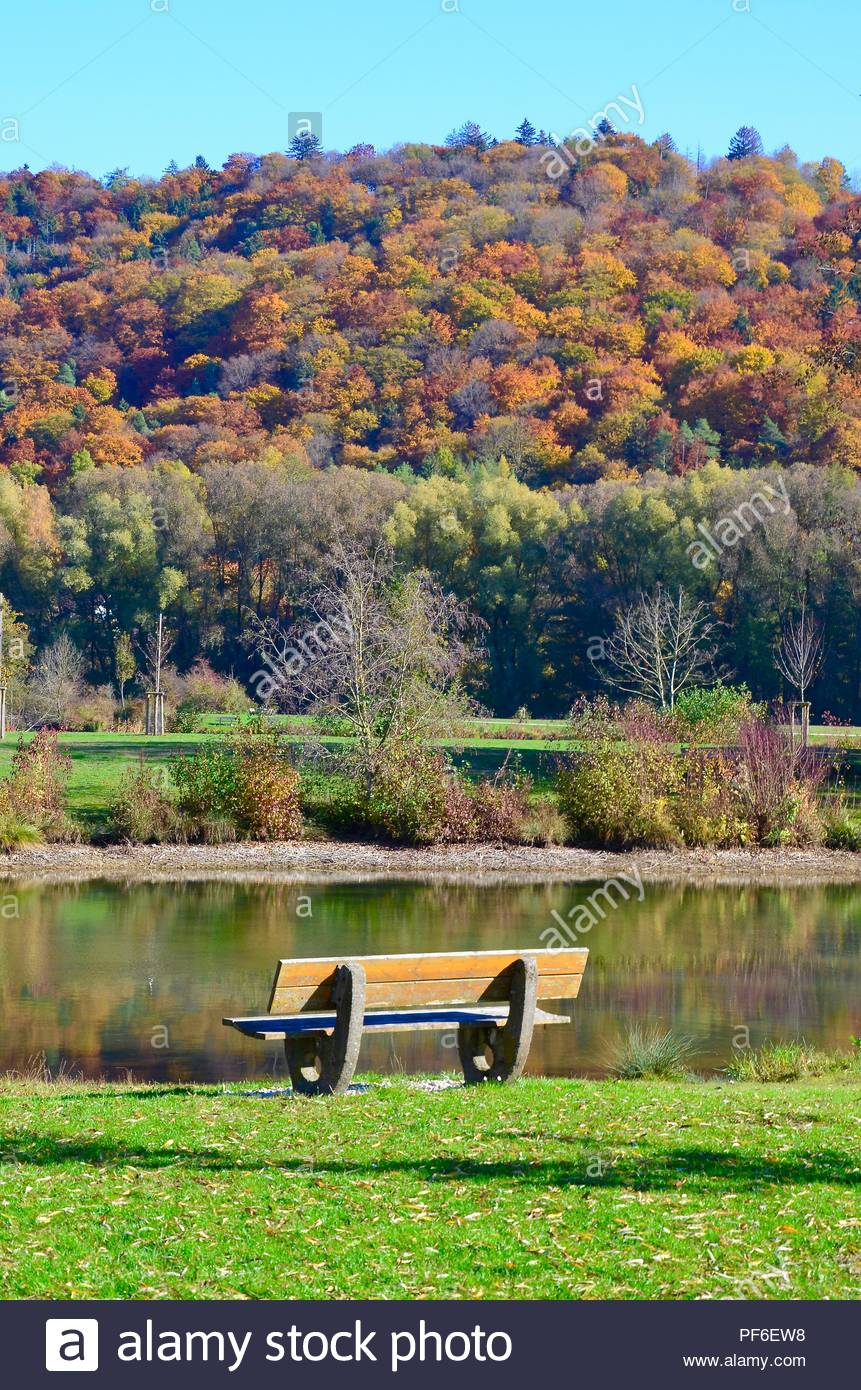 Park bench on a lake in Altmuehltal in Bavaria, Germany, autumn, fall foliage, sunny, blue sky, recreation area, nature preserve, colorful foliage - Stock Image