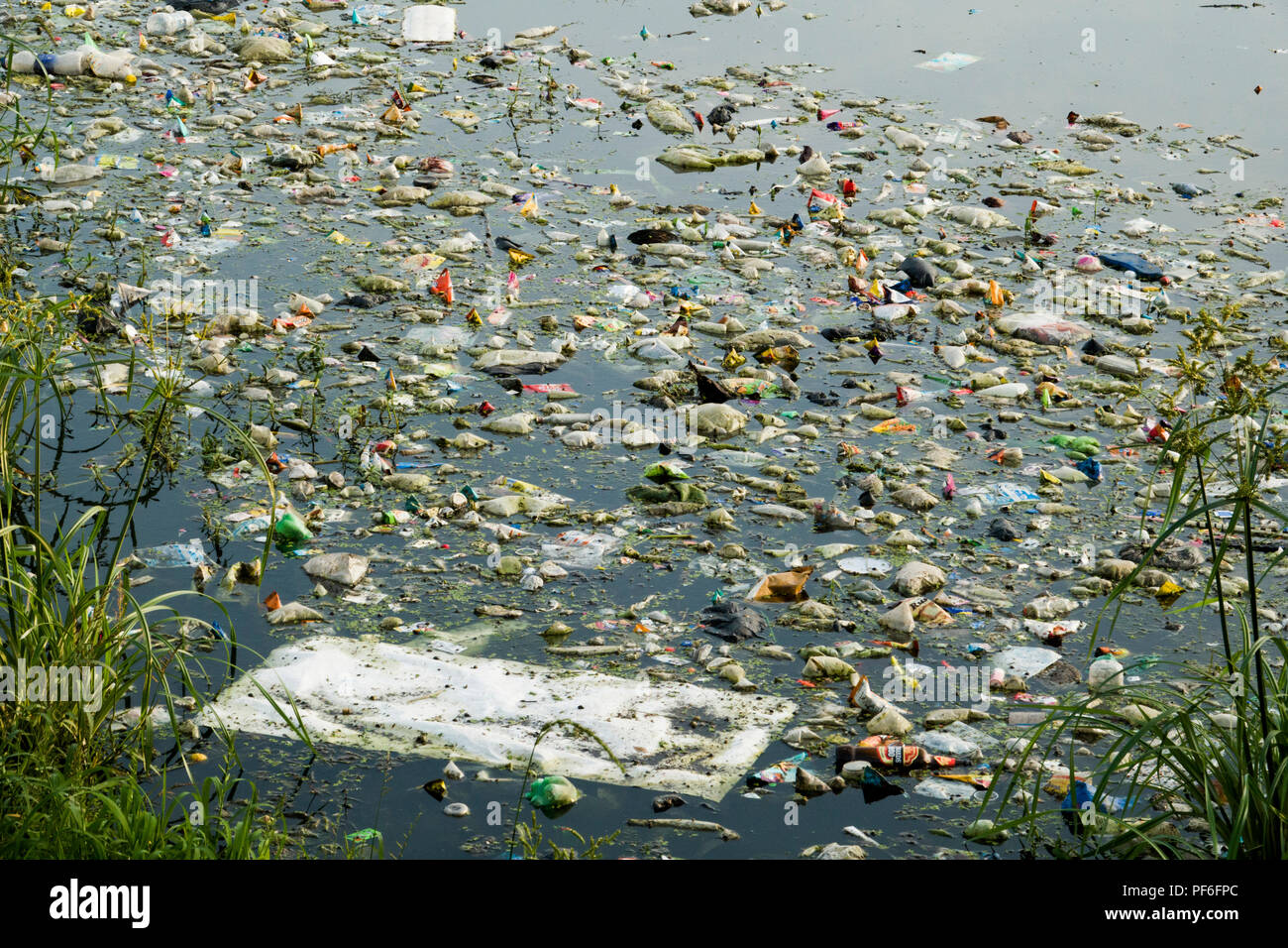 Plastic bags, bottles and other trash in Lake Pichola, Udaipur, India - Stock Image