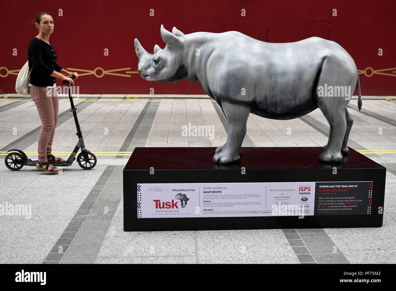 Painted Rhinos Stock Photos & Painted Rhinos Stock Images - Alamy
