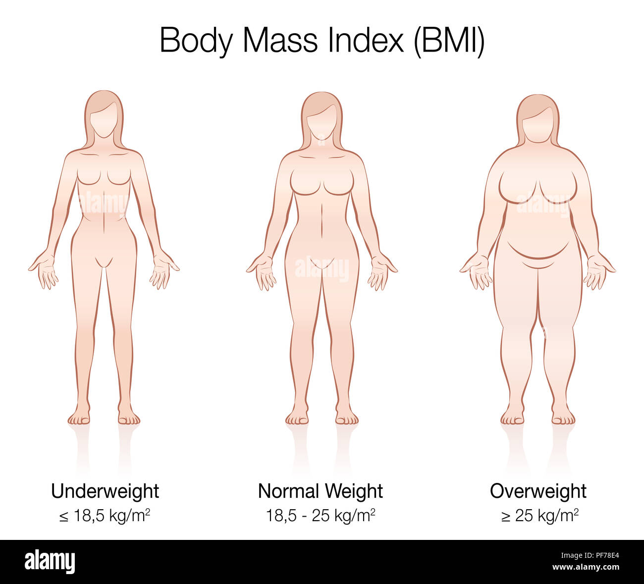 Body Mass Index Bmi Underweight Normal Weight And Overweight Female Body Illustration Of Three Women With Different Anatomy Stock Photo Alamy
