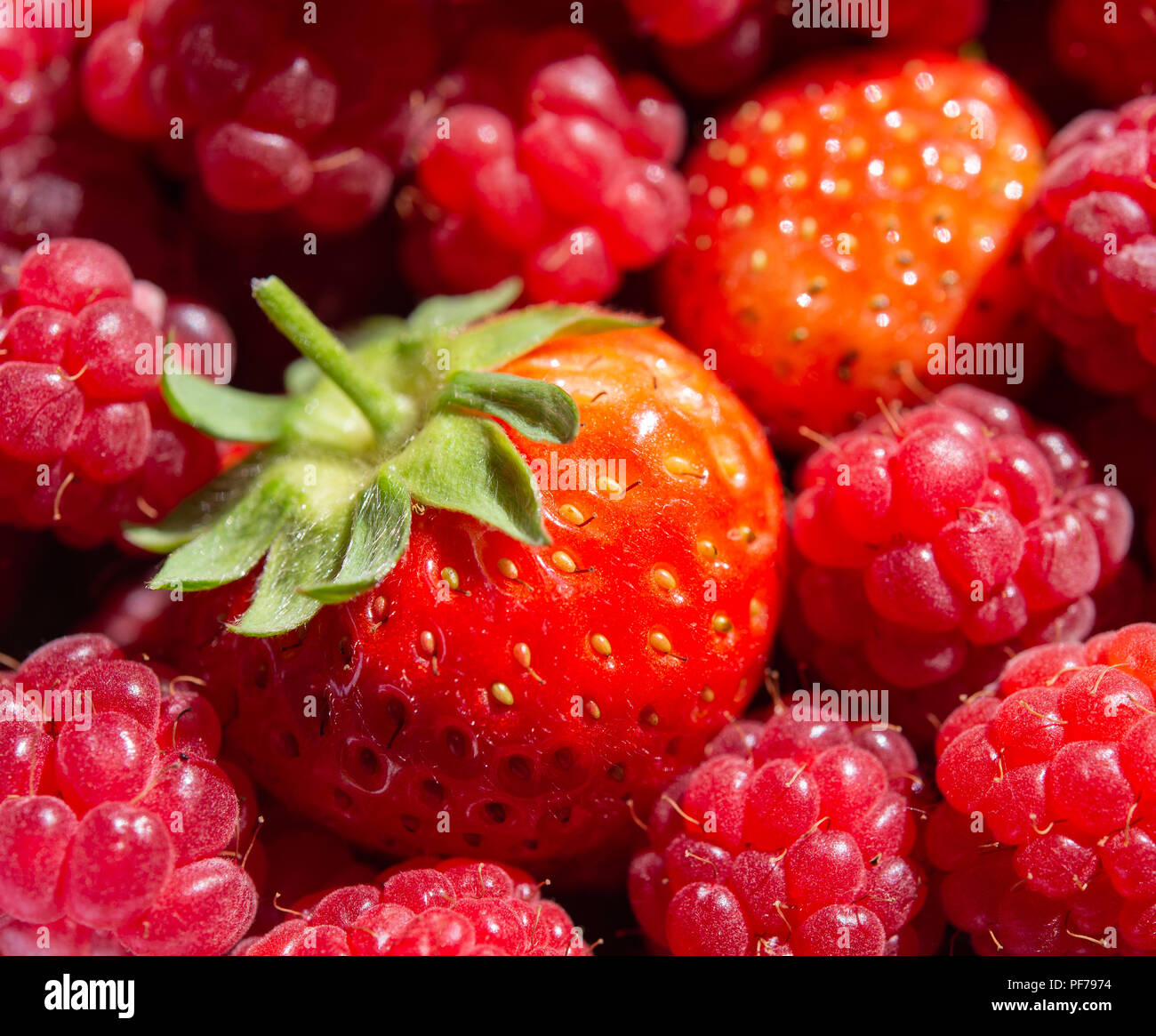 Bright and colourful summer strawberries and raspberries - Stock Image