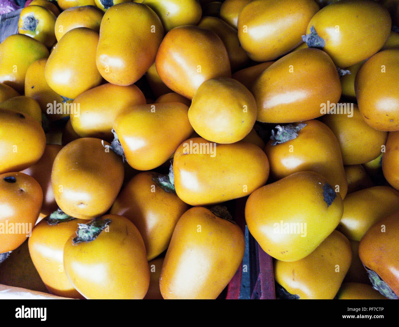 Solanum sessiliflorum or Cocona is a fruit that grows in tropical areas, mainly in the Peruvian Amazon - Stock Image