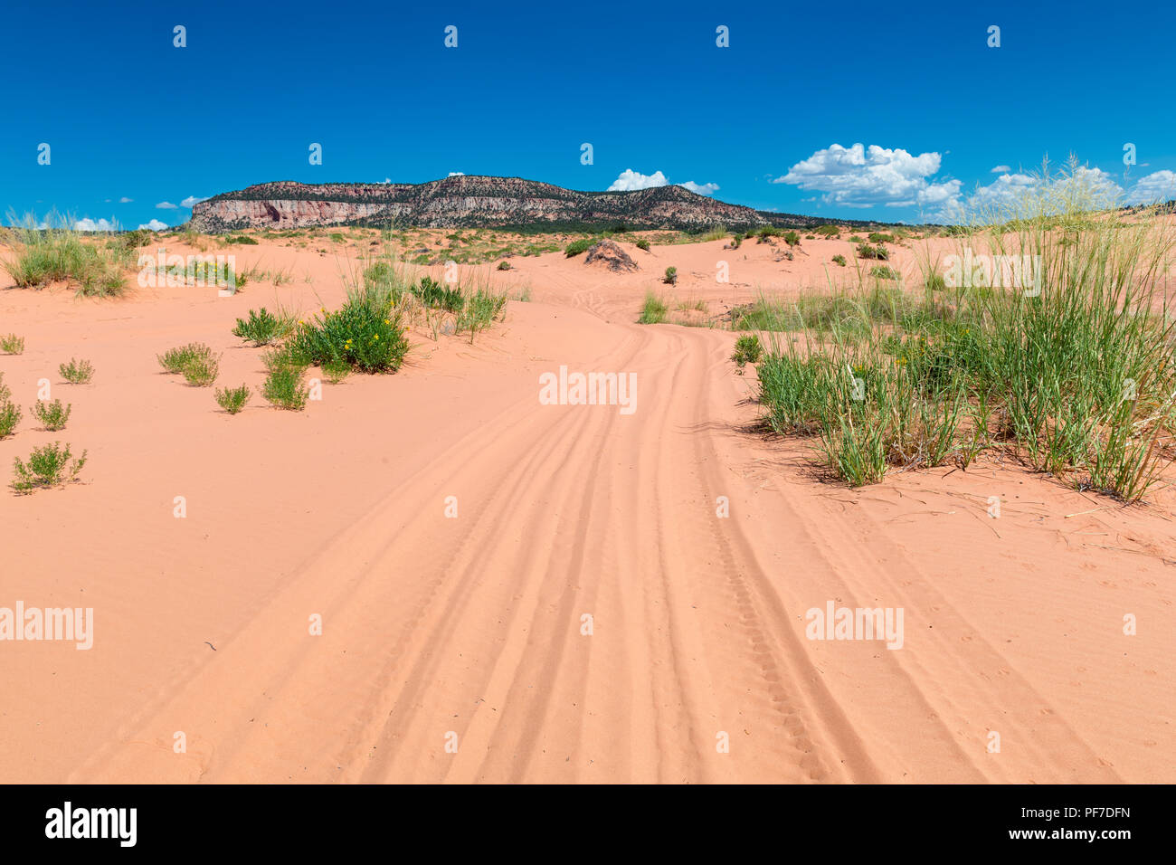Road in the sand dunes of the desert - Stock Image