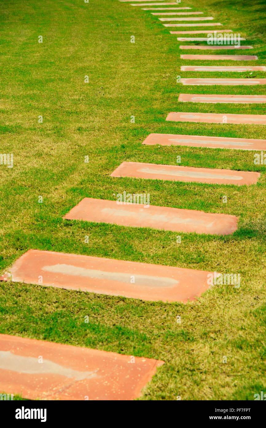 Garden with stone  path Garden with stone  path - Stock Image