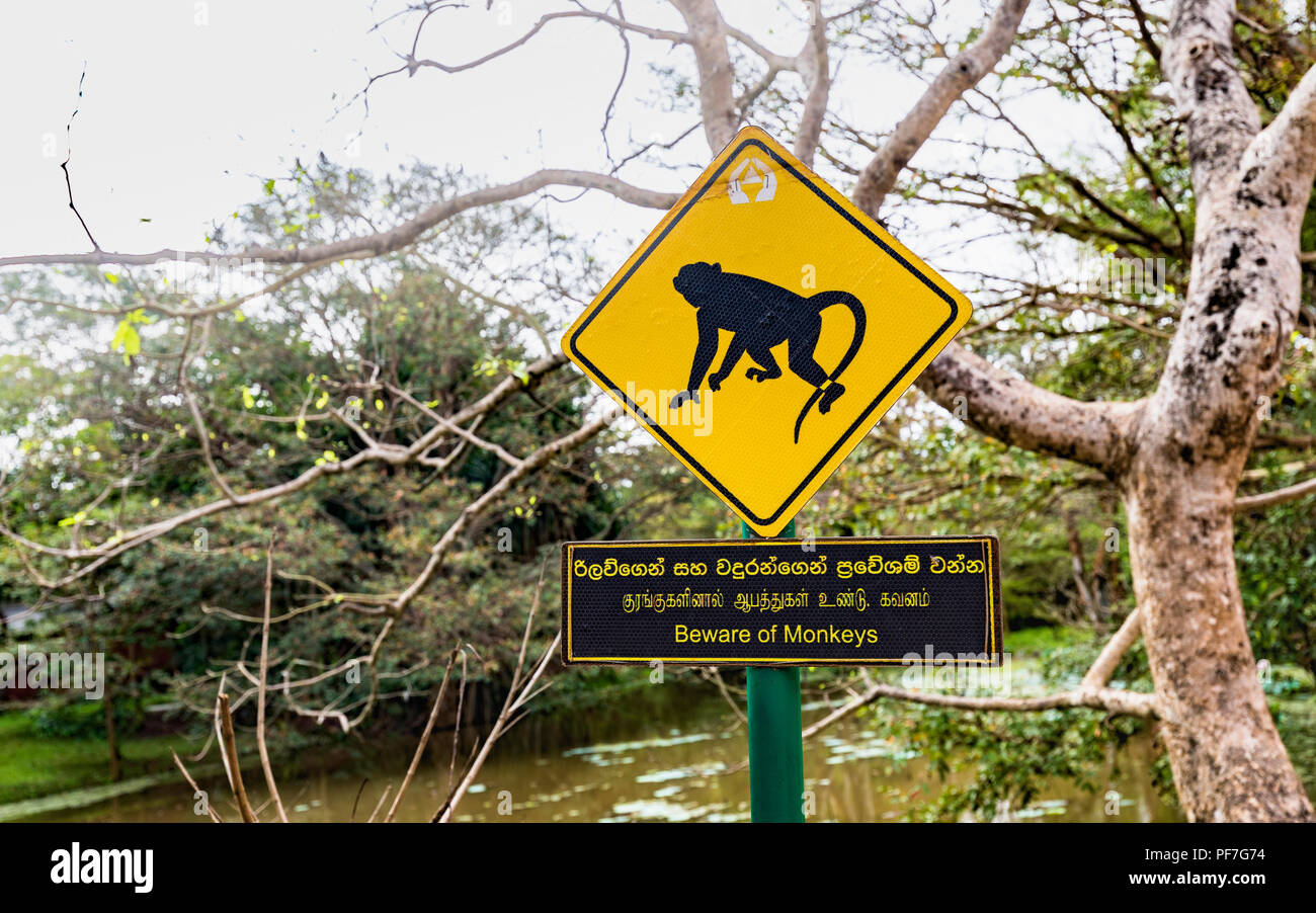 Beware of Monkeys warning sign at Sigiriya or Lion Rock in the Cultural Triangle of Sri Lanka, a leading historic monument tourist attraction - Stock Image