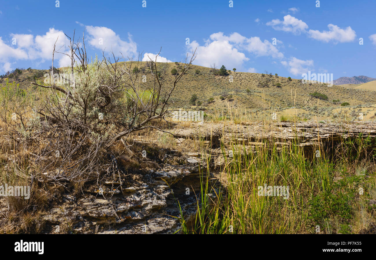 The arid, rugged prairie covered in sagebrush and rocks with Rocky foothills as backdrop in Yellowstone, Wyoming, USA. - Stock Image