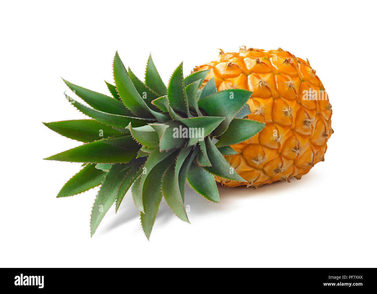 Lying pineapple isolated on white background as package design element - Stock Image