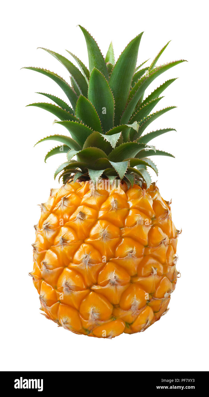 Pineapple fruit isolated on white background as package design element - Stock Image