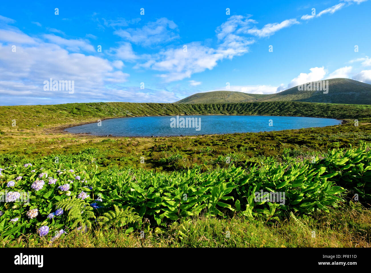 Lagoa Rasa (Plate Lake) - Azores Islands Stock Photo