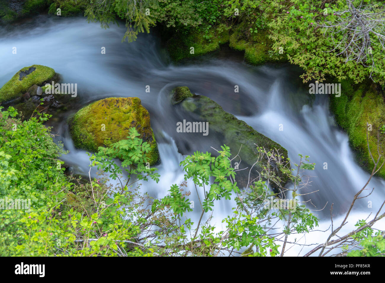 Rushing creek in Oregon - Stock Image
