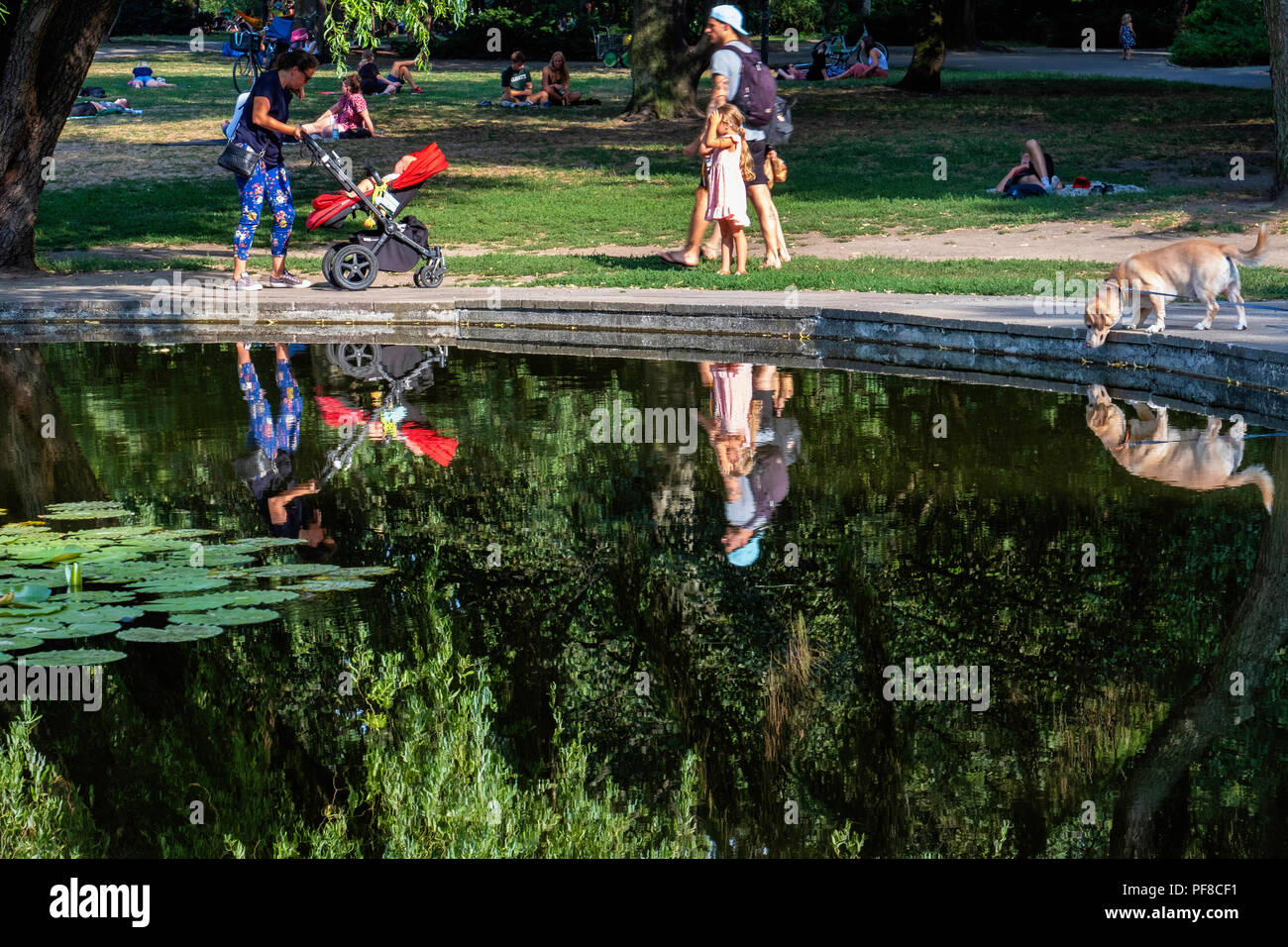 Berlin,Mitte, Weinbergspark, People,children & dog relax next to pond in the public park on a hot Summer evening - Stock Image