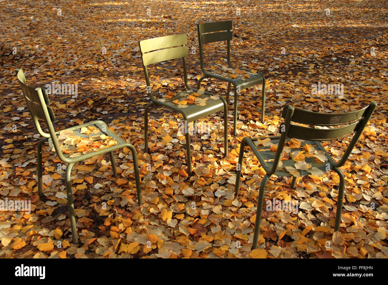Fallen leaves into the chairs of the Luxembourg garden, Paris, Ile de France, 75, France - Stock Image
