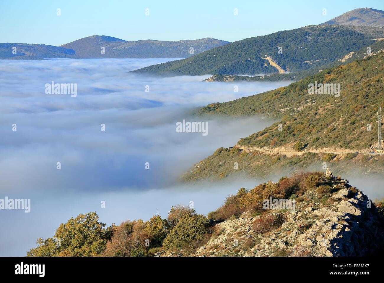 Morning mist, Arriere pays Grassois, Prealpes d'azur, Alpes Maritimes, 06, PACA, France - Stock Image