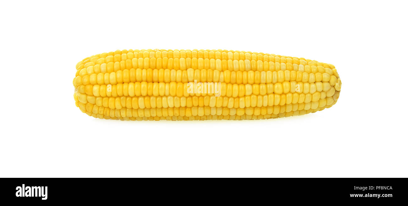 ears of Sweet corn isolated on white background. - Stock Image