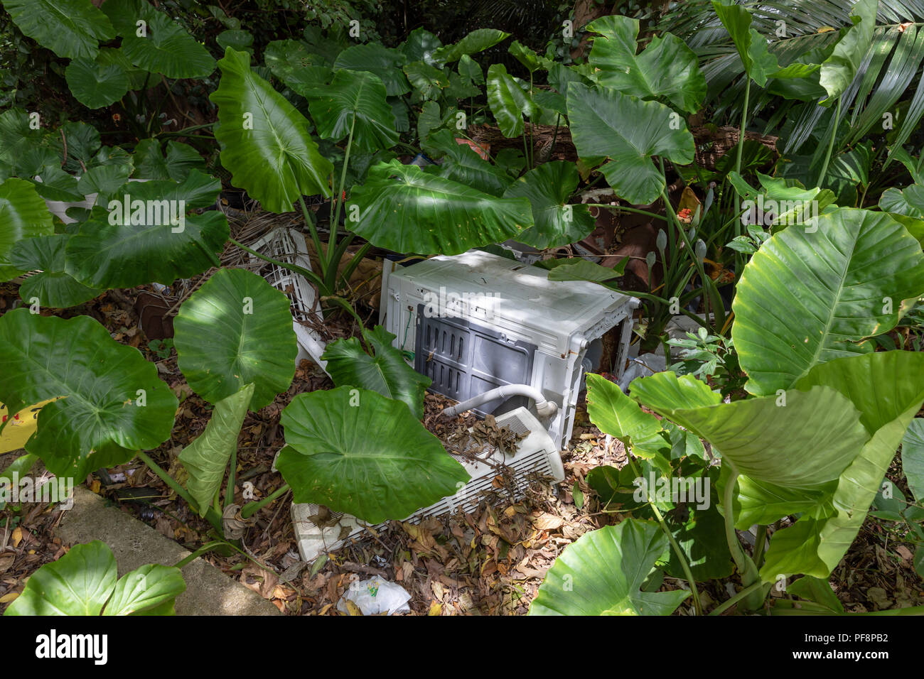 Electronic appliances, dumped in nature; Okinawa, Japan - Stock Image