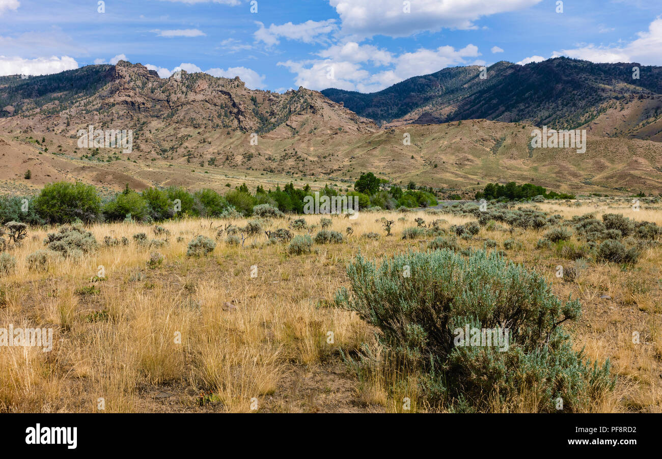 Arid prairie with sagebrush and grasses flanked by Rocky Mountains on bright day in summer in Cody, Wyoming, USA. - Stock Image