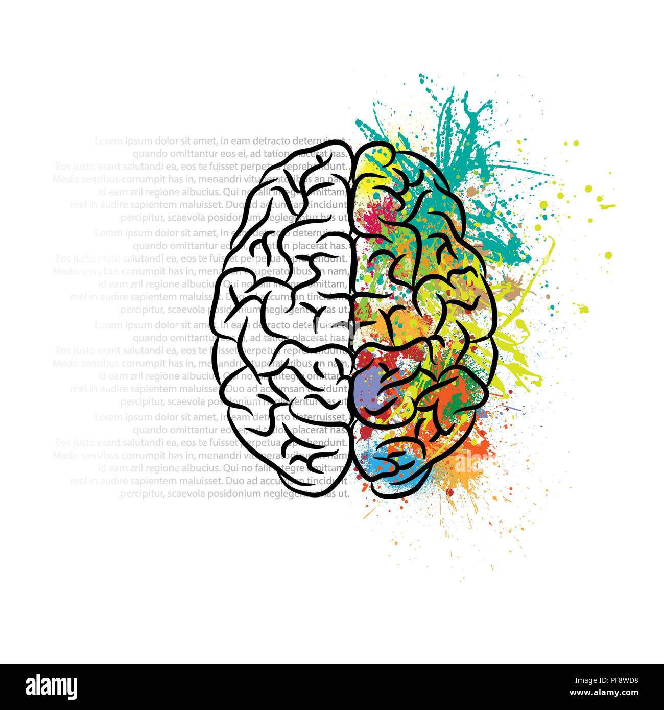 Human brain silhouette with color ink splashes and gray text - Stock Image