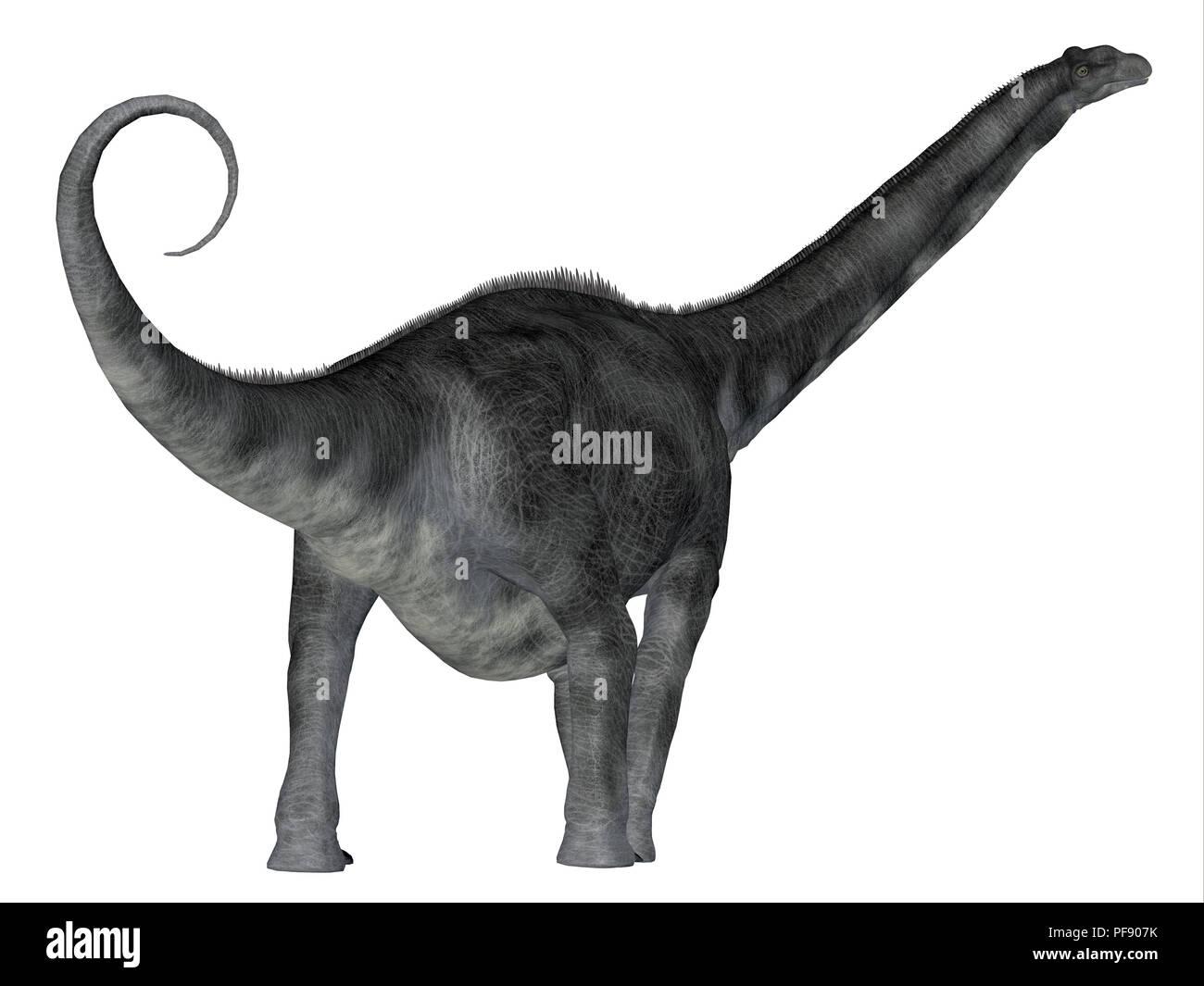 Argentinosaurus Dinosaur - Argentinosaurus was a herbivorous sauropod dinosaur that lived in Argentina during the Cretaceous Period. - Stock Image