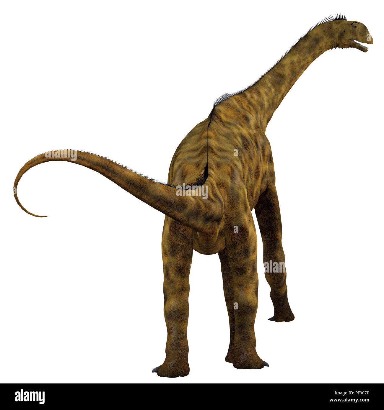 Atlasaurus Dinosaur - Atlasaurus was a herbivorous sauropod dinosaur that lived in Morocco, North Africa during the Jurassic Period. - Stock Image