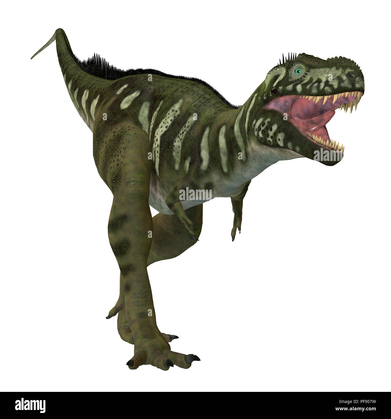 Bistahieversor Dinosaur - Bistahieversor was a carnivorous theropod dinosaur that lived in New Mexico, North America during the Cretaceous Period. - Stock Image